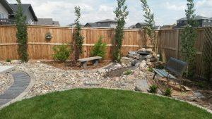 Finished small backyard