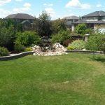 Large backyard - matured